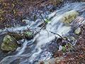 creek runoff