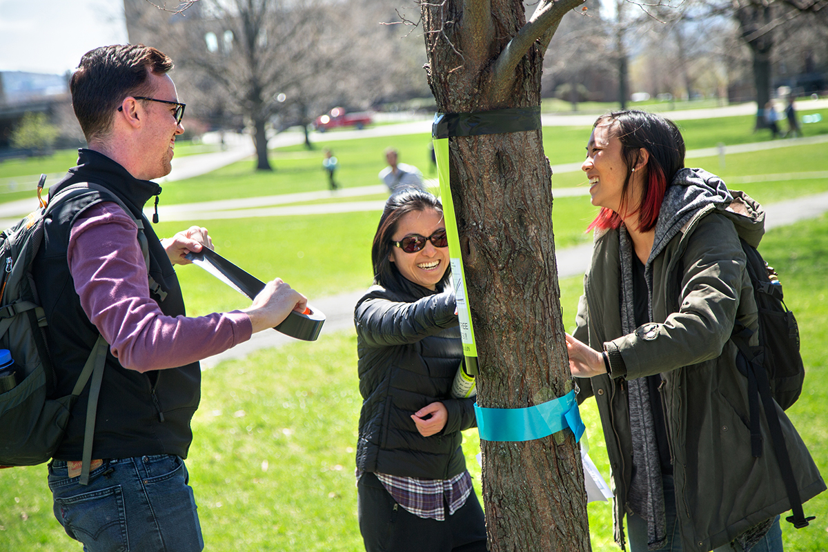 Students tag trees on Arts Quad